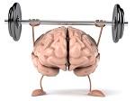 ویدئو: آیا از اهمیت دانش مغزی عصبی در کسبوکارها مطلعید؟