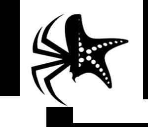 عنکبوت و ستاره دریایی-فصل7: ترکیب معجزهگر: سازمانهای هیبریدی