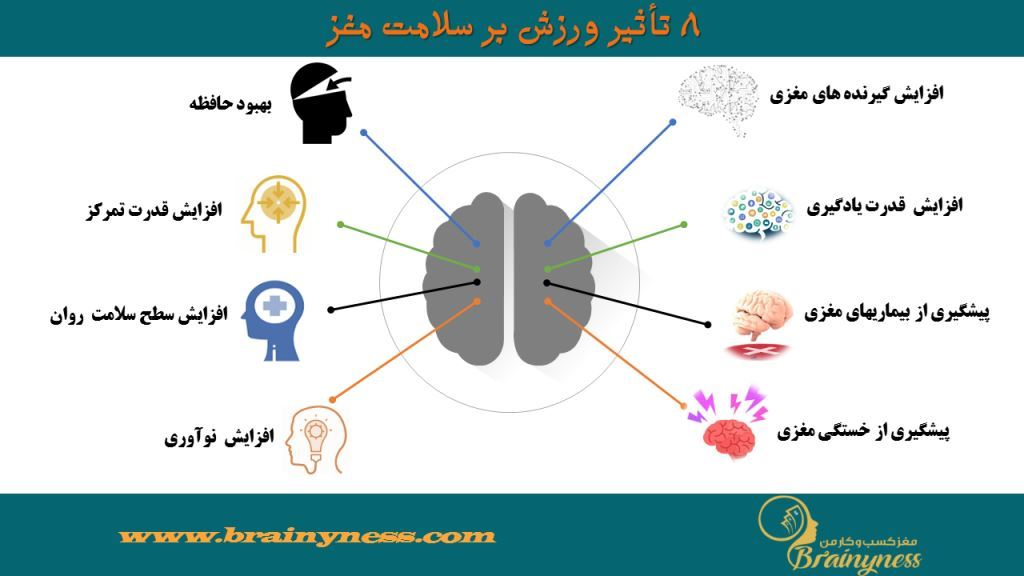 BrainynessPhysical activity and Brain